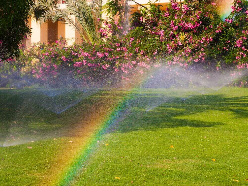 Watering Well Keeping Your Florida Friendly Lawn Healthy