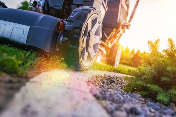 mowing your florida lawn