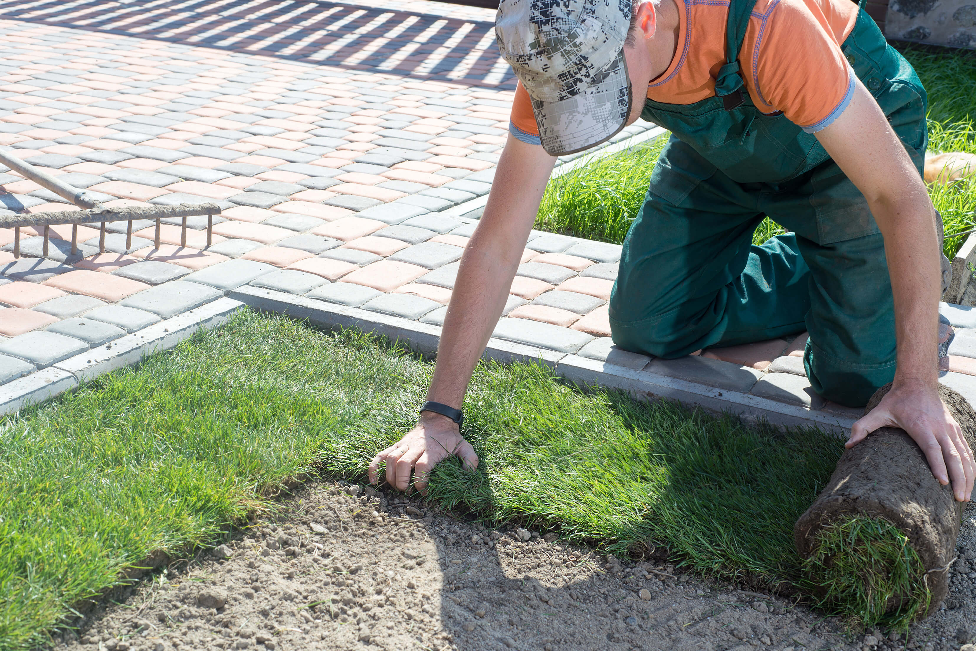 Get the Right Sod for Your Landscaping Project