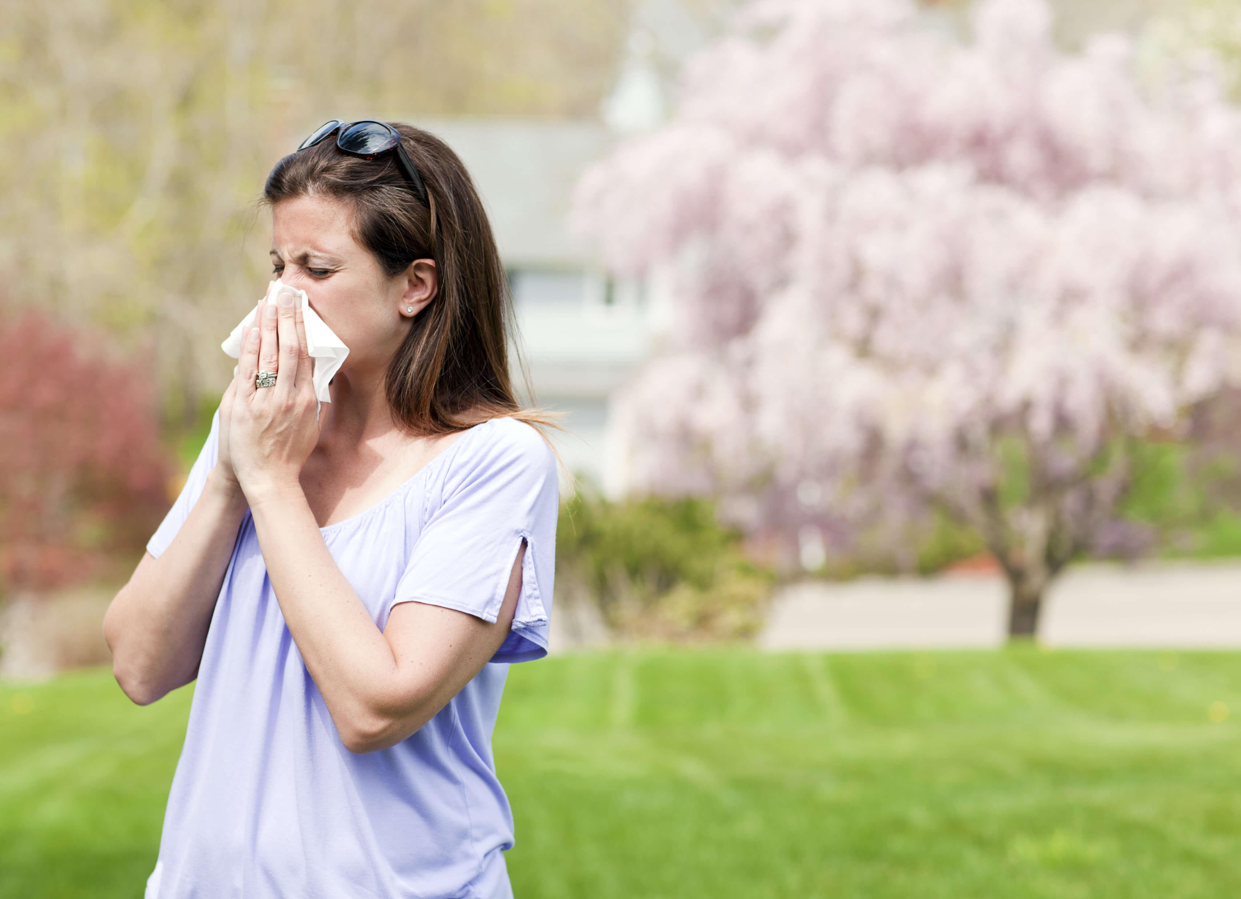 Grass Allergies