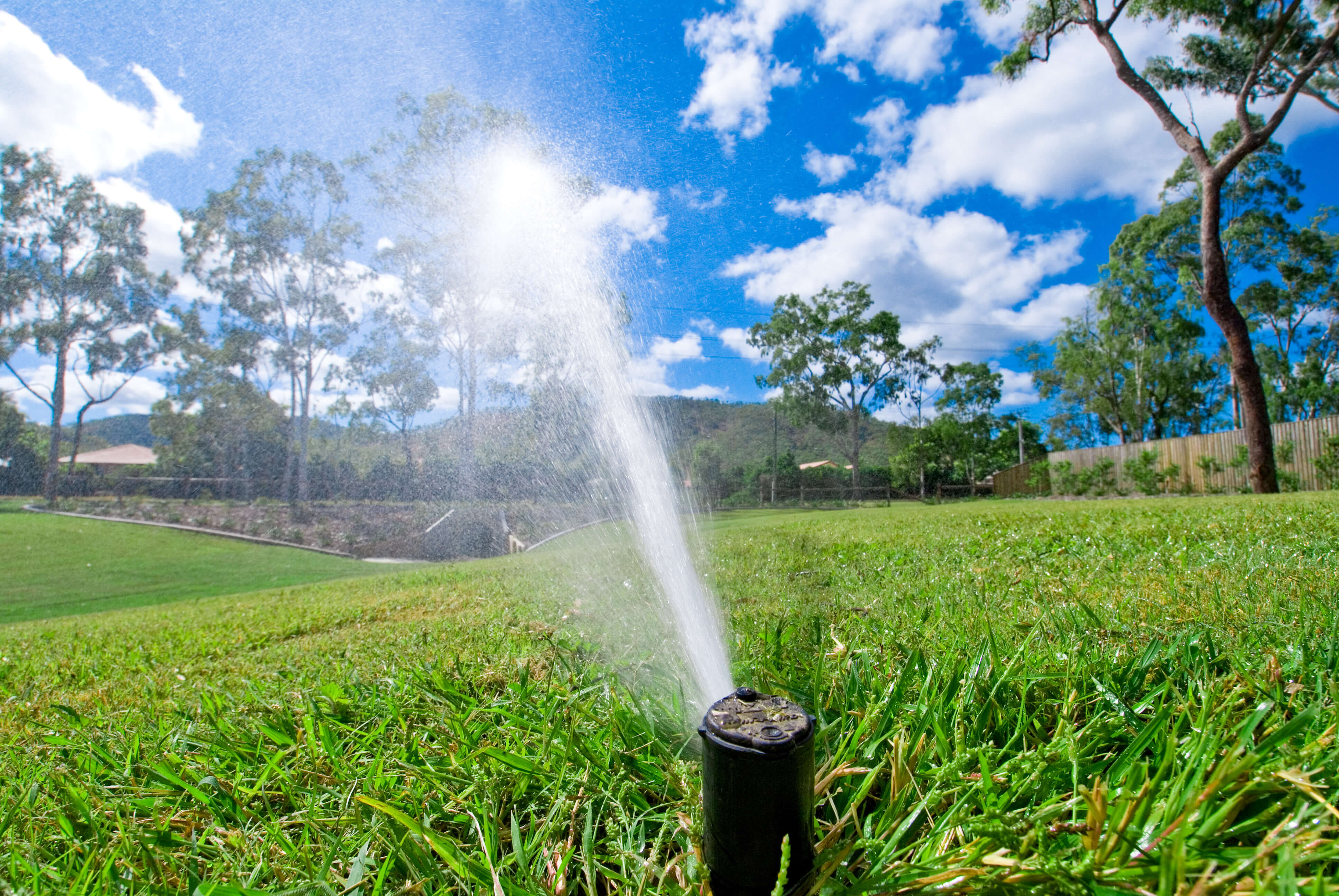 Watering Grass Lawn