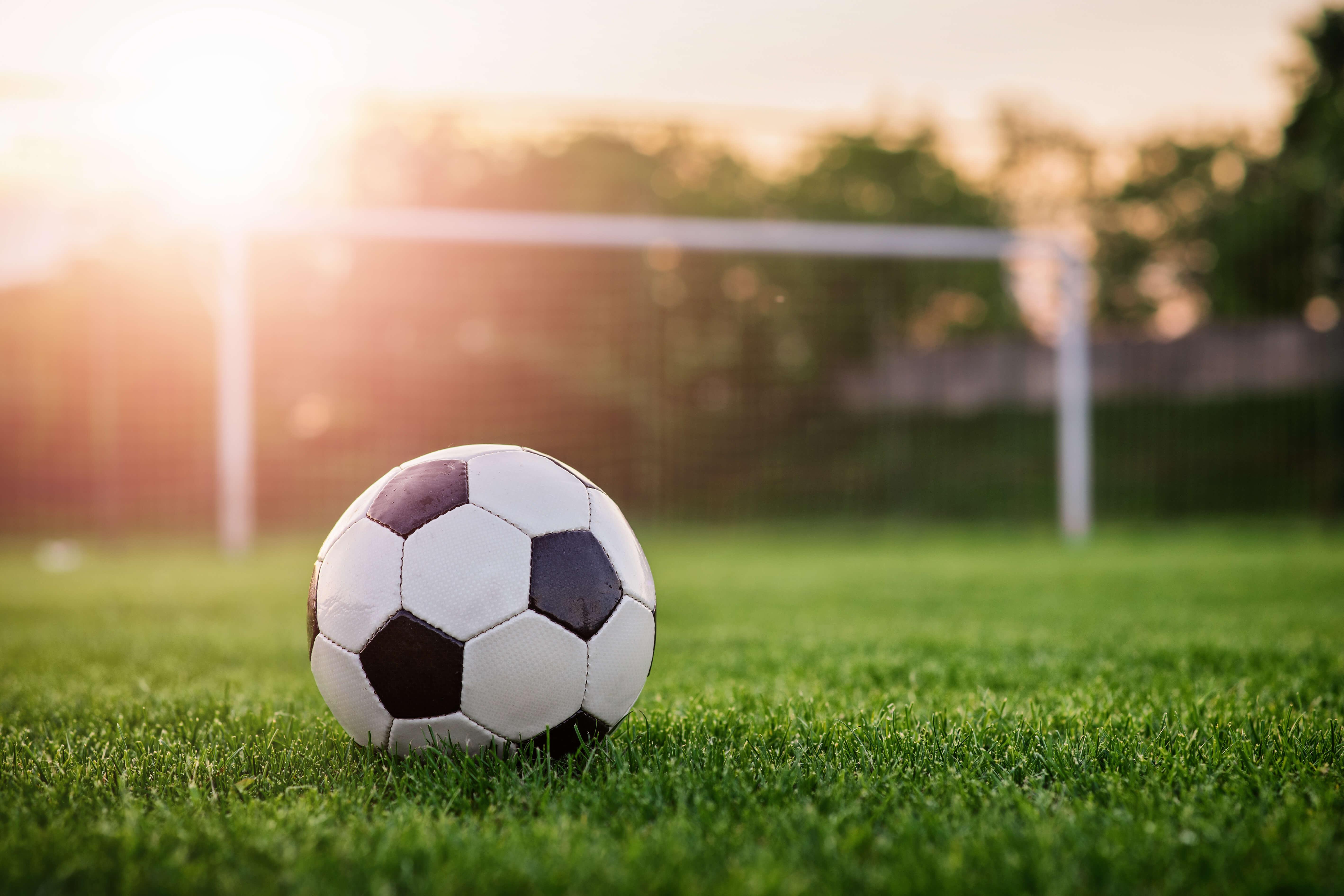 Grass Sports