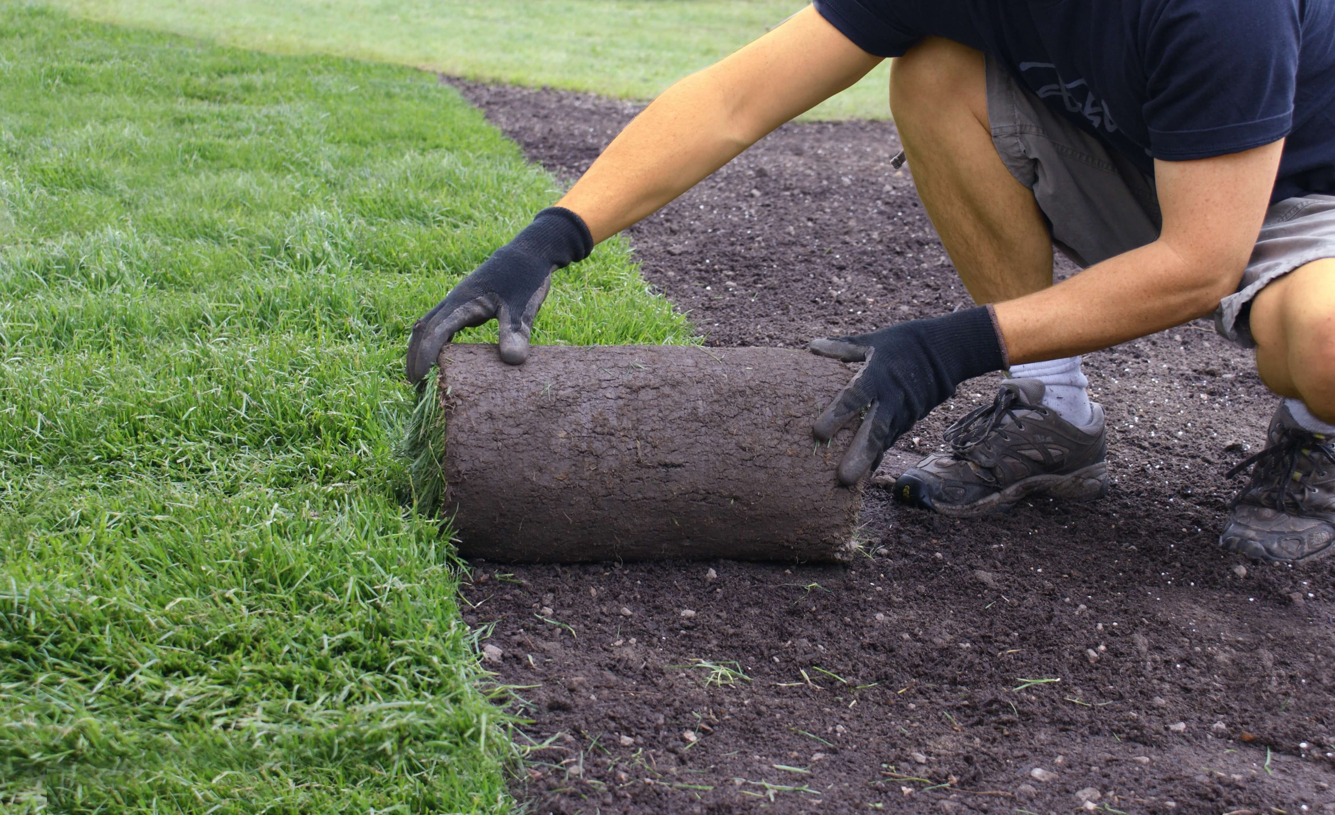 How To Lay Sod Duda