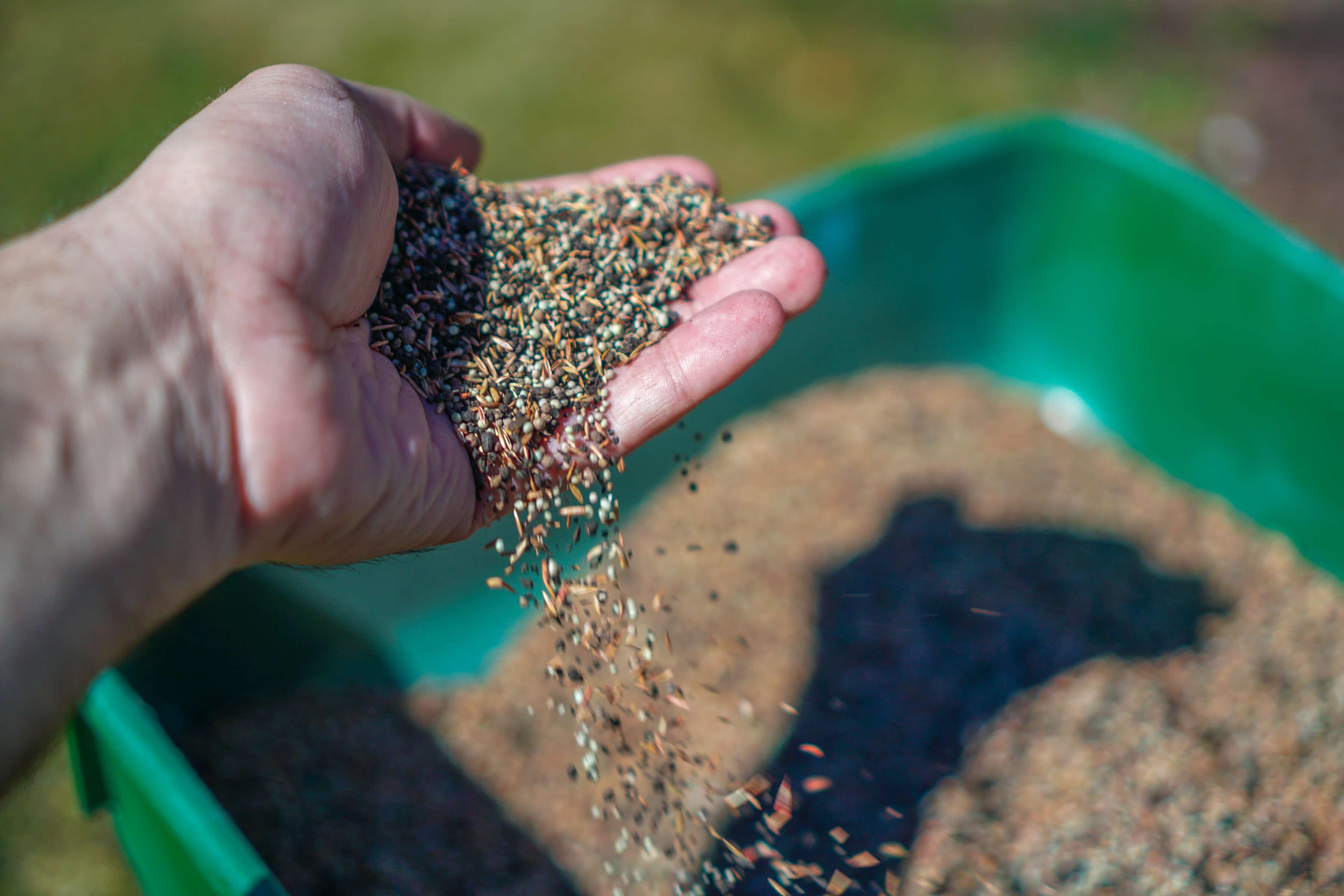Fertilizer. Fertilize lawn.